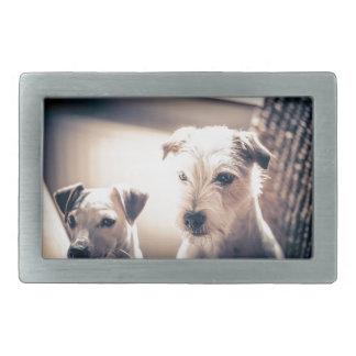 dogs belt buckle