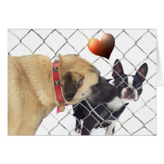 dogs dans love carte de correspondance