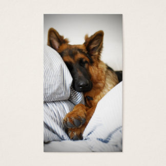 Dogs Hotel Business Card