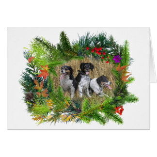 Dogs in Winter Plant Ring Card