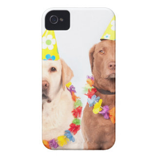 dogs iPhone 4 cases