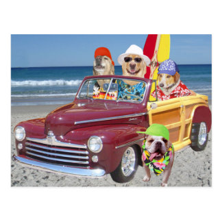 Dogs/Labs on the Beach in a Woodie Postcard