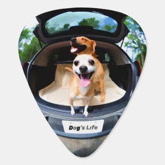 Dog's Life Fish-eye Lens Cute Funny Guitar Pick