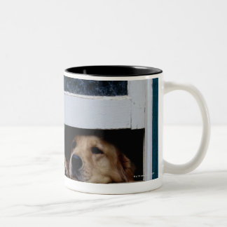 Dogs Looking Out a Window Two-Tone Coffee Mug