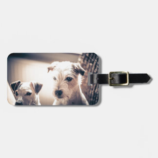 dogs luggage tag
