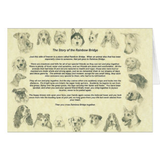 Dogs Notecard with The Rainbow Bridge Note Card