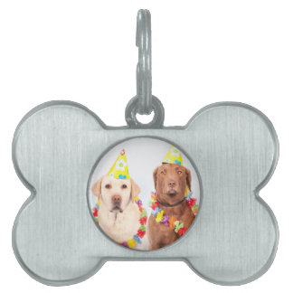 dogs pet ID tag