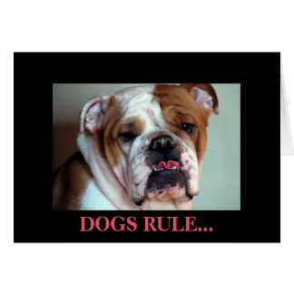 Dogs rule. card
