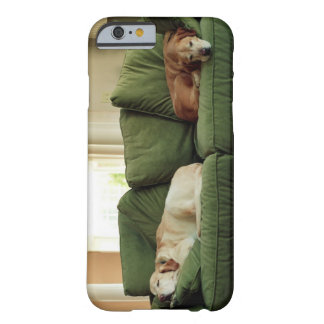 Dogs sleeping on sofa barely there iPhone 6 case