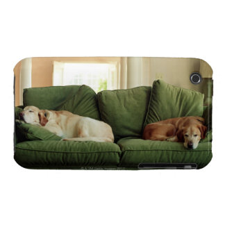 Dogs sleeping on sofa iPhone 3 Case-Mate case