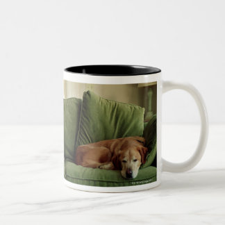 Dogs sleeping on sofa Two-Tone coffee mug