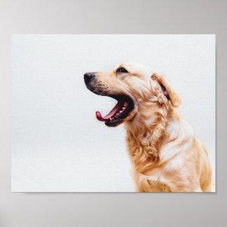 Dog's Tongue Poster