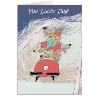 Dogsled - birthday card
