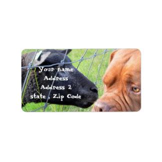Dogue de Bordeaux Étiquette D'adresse