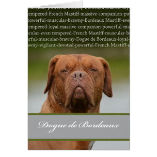 Dogue de Bordeaux, Dog Breed Description Card