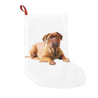 Dogue de Bordeaux Dog Small Christmas Stocking