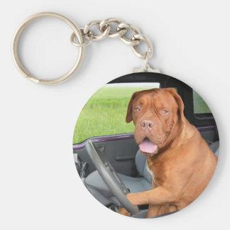 Dogue de Bordeaux driving Keychain