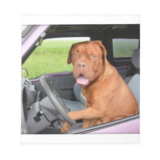 Dogue de Bordeaux driving Notepad