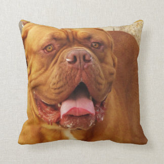 Dogue de Bordeaux -  French Mastiff breed picture Throw Pillow