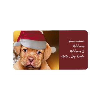 Dogue de Bordeaux puppy mailing labels