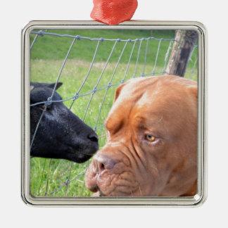 Dogue de Bordeaux Silver-Colored Square Ornament