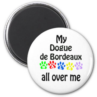 Dogue de Bordeaux Walks Magnet