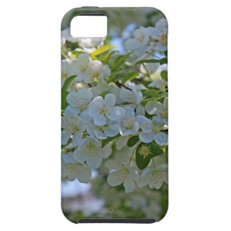 Dogwood iPhone 5 Covers