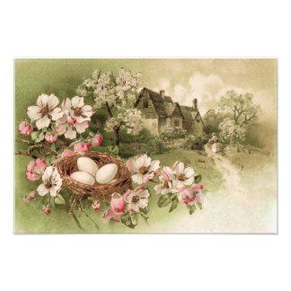 Dogwood Tree Bird Nest Egg Cottage Photographic Print