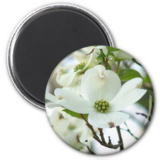 Dogwood Tree Flower Magnet
