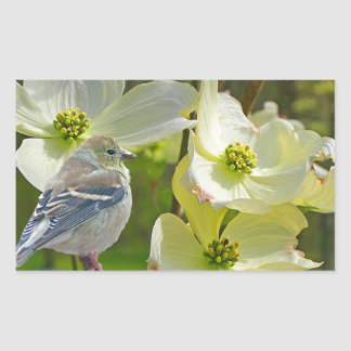 """Dogwood Visitor"" Finch Songbird Sticker"