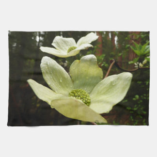 Dogwoods and Redwoods in Yosemite National Park Kitchen Towel
