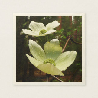 Dogwoods and Redwoods in Yosemite National Park Paper Napkin
