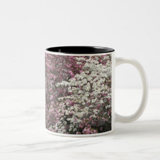 Dogwood's Delight Mug
