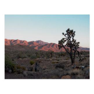 Dolan Springs Postcard