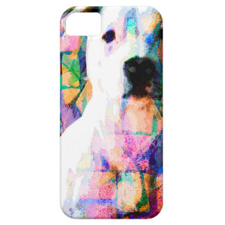 DOLLAR iPhone 5 CASE