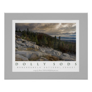 Dolly Sods Wilderness in West Virginia Poster