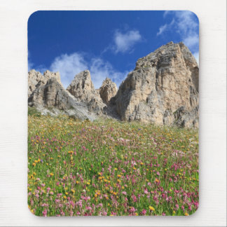 Dolomiti - flowered meadow mouse pad