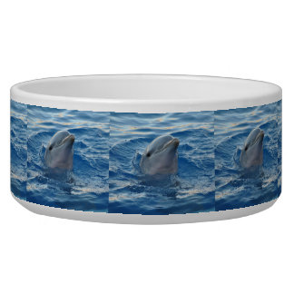 Dolphin20151021 Dog Food Bowls