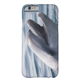 Dolphin 2 barely there iPhone 6 case