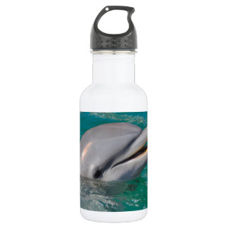 Dolphin Close Up 532 Ml Water Bottle
