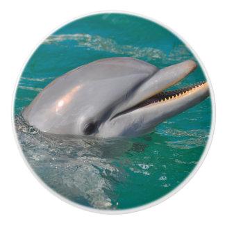 Dolphin Close Up Ceramic Knob
