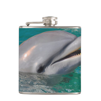 Dolphin Close Up Hip Flask