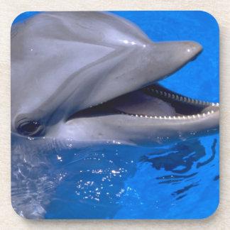 Dolphin coaster set