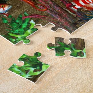 Dolphin Discovery 2 3D Aquarium Puzzle