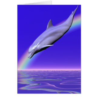 Dolphin Download Card