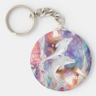 dolphin dreams, iam keychain
