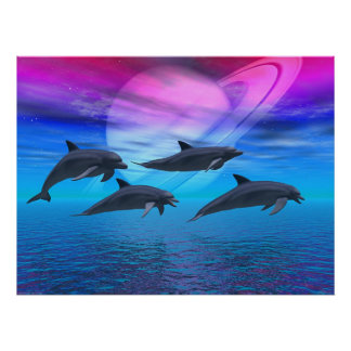 Dolphin Dreams Poster