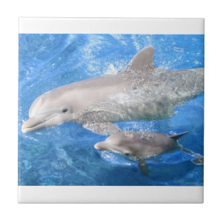 Dolphin Mother and Baby Ceramic Tile