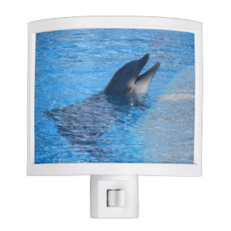 dolphin Night Light