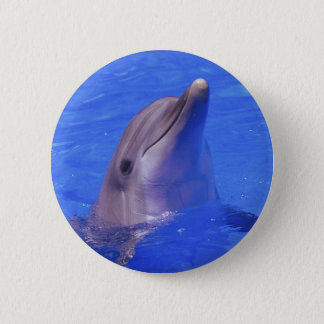 Dolphin Nose 2 Inch Round Button